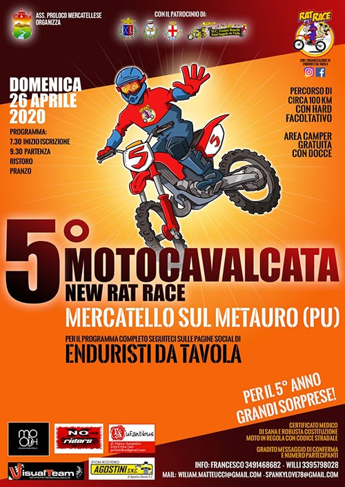 New Rat Race